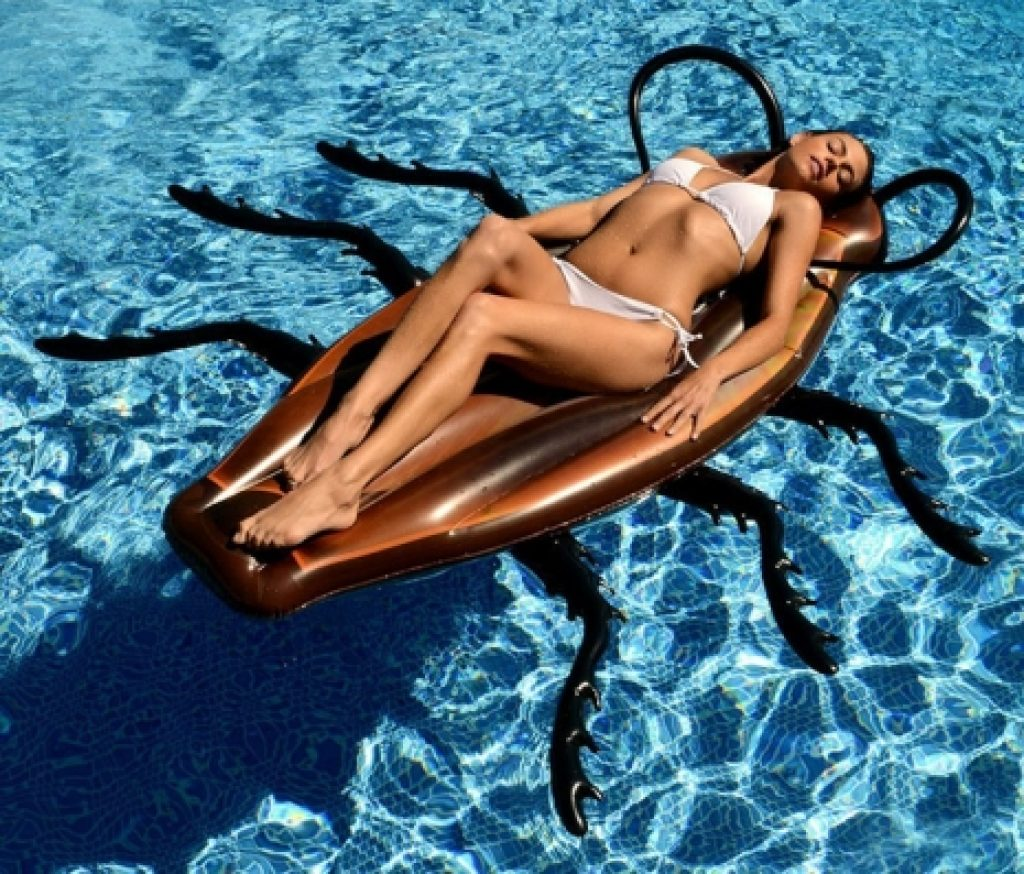 gigantic-cockroach-raft-inflatable-pool-float